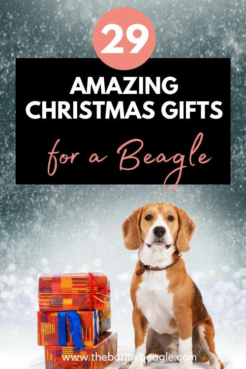 29 best christmas gifts for a beagle